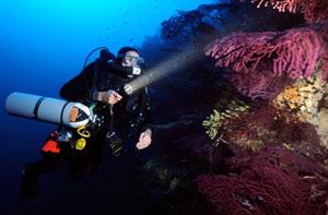 TDI Helitrox Diver - Rebreatherpro-Training