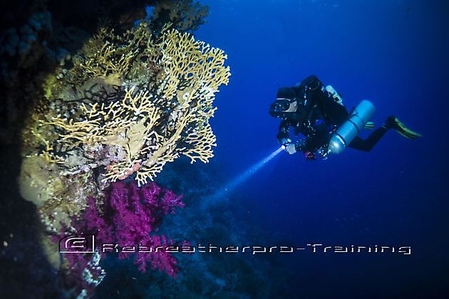 Rebreather Try Dive - Rebreatherpro-Training