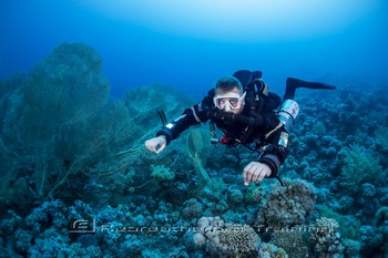 Red Sea Training and Diving Rebreatherpro-Training